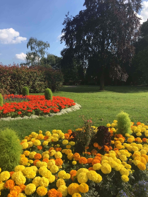 victoria-park-flowerbed-5
