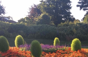 victoria-park-flowerbeds-4
