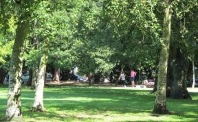 victoria-park-brian-plen-27
